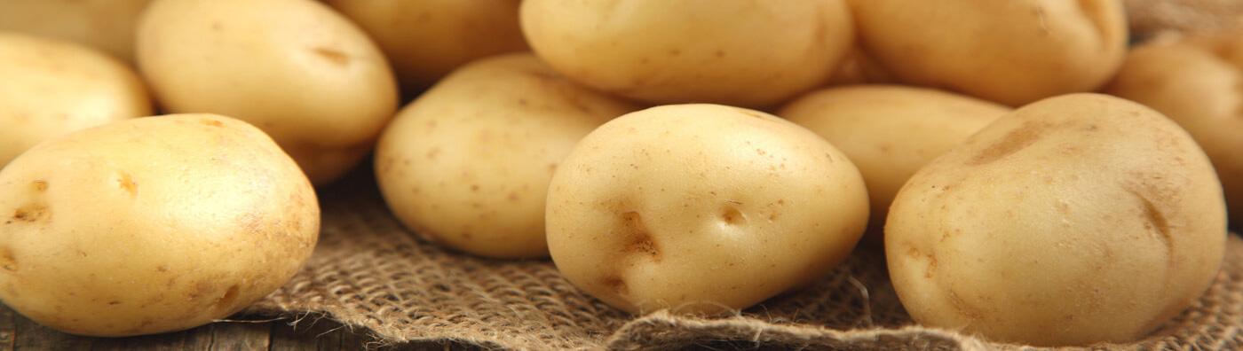 Aardappelzetmeel